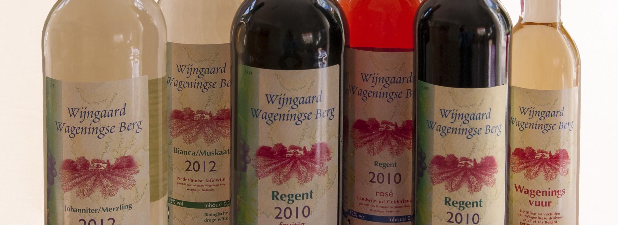 Wijnbouwadvies Oude Voshaar